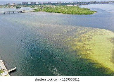 Aerial view of red tide along Florida's gulf coast - summer/fall 2018