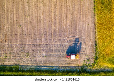 Aerial view of red tractor spraying herbicide on young corn field, glyphosate weed control, GMO treated seeds in food chain
