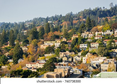 Aerial view of residential neighborhood built on a hill on a sunny autumn day, Berkeley, San Francisco bay, California;