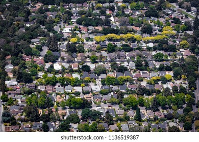 Aerial View of a Residential Palo Alto Neighborhood Close to Stanford University in the Silicon Valley Area in California, USA