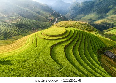 Aerial view of Rice fields on terraced of Mu Cang Chai, YenBai, Vietnam. Vietnam landscapes.