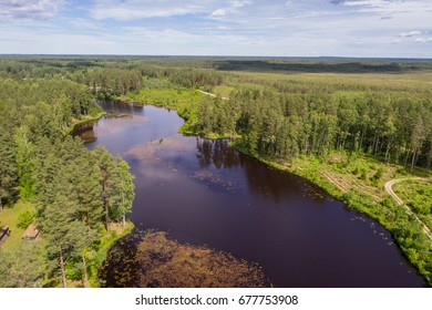 Aerial view of river among the forest. Summer nature landscape.