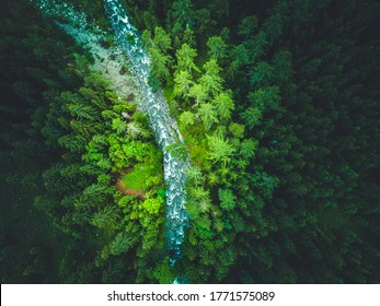 Aerial view. River flowing in the magical forest landscape.