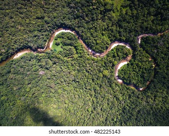Aerial View of River in Rainforest, Brazil