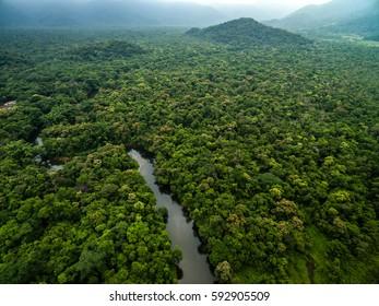 Vista aérea de río en selva tropical, Latinoamérica