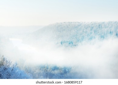 Aerial view of the river and snow-covered forest after a blizzard in a morning haze. Clear blue sky. Winter wonderland. Gauja national park, Sigulda, Latvia