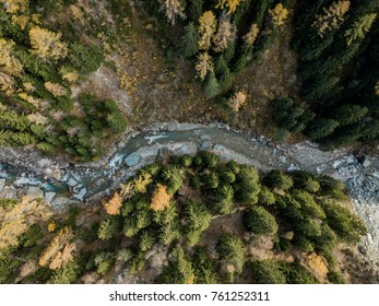 Aerial view of river through forest in autumn landscape