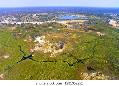Aerial view of rivers, streams and grasslands in Okavango Delta, Botswana, Africa.