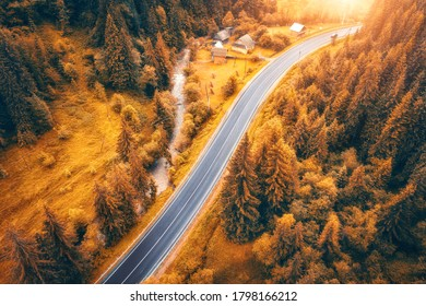 Aerial view of road in beautiful orange forest at sunset in autumn. Colorful landscape with roadway, trees in fall. Carpathian mountains. Top view from drone of winding road. Autumn colors. Travel