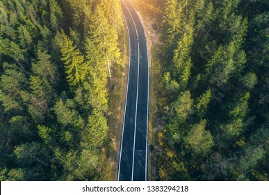 Aerial view of the road in beautiful spring forest at sunset in Dolomites. Top view of perfect asphalt roadway, green pine trees. Natural landscape with highway through the woodland in europe. Travel