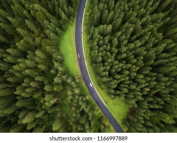 Aerial view of road and  cars passing by in green forest in mountains. drone shot
