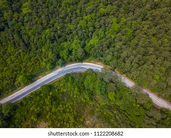 Aerial view of the road in the forest