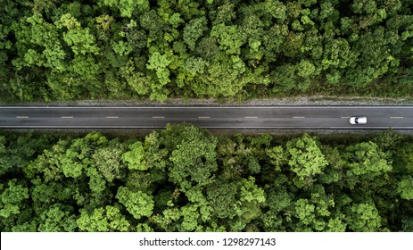 Aerial view road going through forest, Road through the green forest, Aerial top view car in forest, Texture of forest view from above, Ecosystem and healthy environment concepts and background.