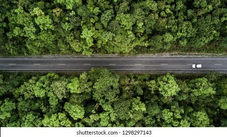 Estrada através da floresta verde, estrada vista aérea passando pela floresta.