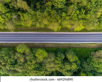 Aerial View of road and green forest