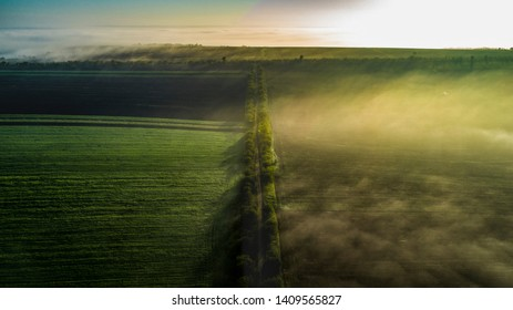 Aerial view of a road and tree field windbreaks durinf sunrise