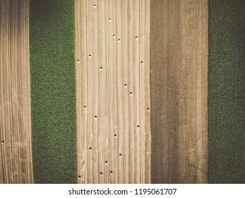 Aerial view of round hay bales on stubble, view from directly above