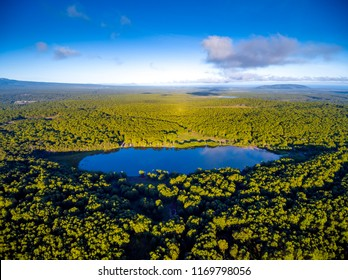 Aerial view at round lake in forest