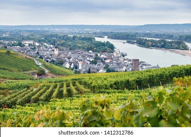 Aerial view to the Rudesheim am Rhein town Germany from tourist route