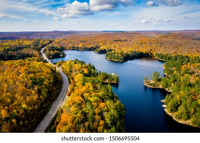 Aerial view of a rural highway by a lake and through a forest in autumn