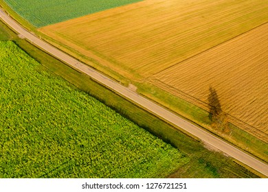 aerial view of rural land in autum