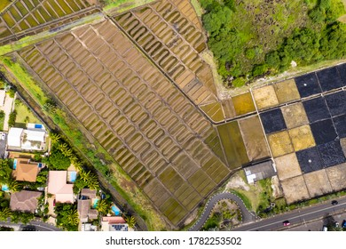 Aerial view, salt flats at the village of Tamarin on Mount du Tamarin, Mauritius, Africa