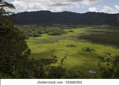 Aerial view of savannah in Arusha National Park Tanzania.