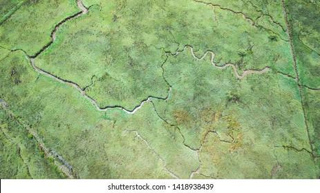 aerial view of serpentine marshland