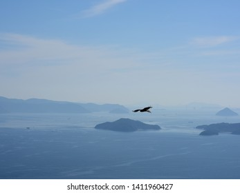 Aerial view of the setouchi bridges called Shimanami Kaido in Shikoku from Naoshima and an flying eagle silhouette.