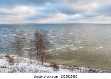 Aerial view of shore of Baltic Sea with calm waves and birches on the coast. Winter time.