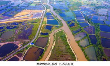 Aerial view  shrimp pond