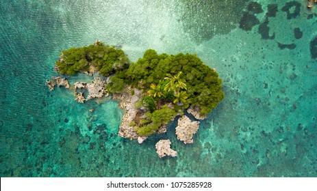 Aerial view of a small paradise island near Hatta island, Maluku, Indonesia