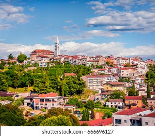 Aerial view of small town Vrsar (Orsera) and St. Martin Catholic Church. Colorful spring cityscape of  Croatia, Europe. Traveling concept background. Magnificent Mediterranean landscape.