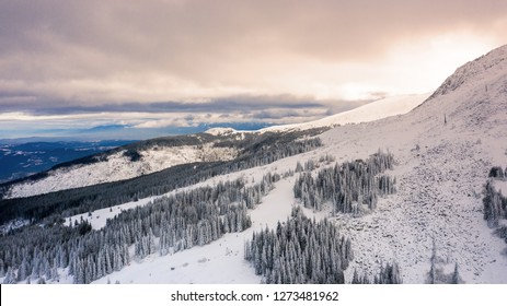 Aerial view of snow covered forest at sunset, Vitosha, Bulgaria.