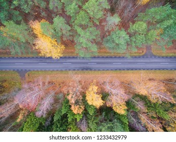 Aerial view of straight road through the mixed forest in the autumn colors, Mazury, Poland
