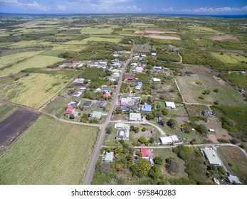 Aerial view of a the sugar cane fields and roads in the Caribbean, Guadeloupe