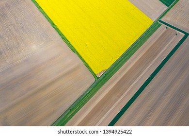 Aerial view of summer fields. Yellow fields from above. Photo captured with drone.