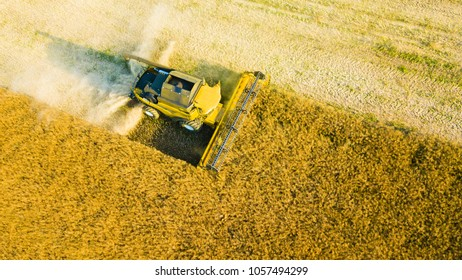 Aerial view of summer harvest. Combine harvester harvesting large field. Agriculture from drone view. Czech republic, European union.