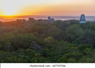 Aerial view of a sunrise above the Peten jungle with the pyramids of Tikal towering above the tree canopy in Guatemala.