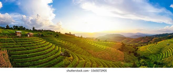 Aerial view Sunset scene of Pa Bong Piang beautiful terraced rice fields, Mae Chaem, Chiang Mai Thailand