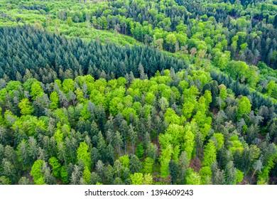 aerial view of Swabian forest in spring, Rems Murr Kreis, Baden Württemberg, Germany