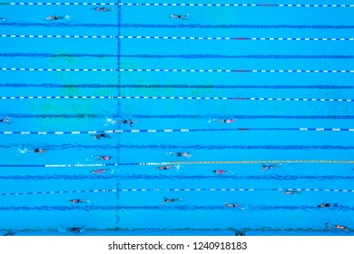 Aerial view of swimming pool with marked lanes and swimmers