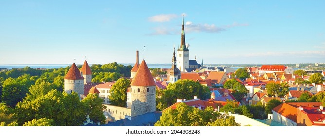 Aerial view of the Tallinn old town on a sunny summer day. St. Olaf's Church close-up. Panoramic cityscape. Travel guide, sightseeing theme. Estonia