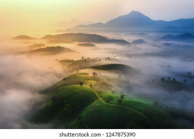 Aerial view of tea hills in Long Coc highland, Phu Tho province in Vietnam
