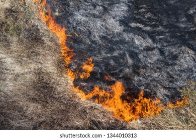 Aerial view of the texture of burning dry grass. Disaster in the forest. Fires in the summer. Bright flames of forest fire. Ecology. Environmental Protection. Burnt land. Drone. Copyspace
