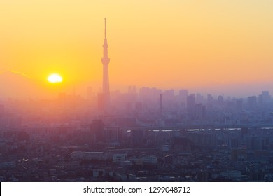 Aerial view of Tokyo city and Skytree tower at dusk in Japan
