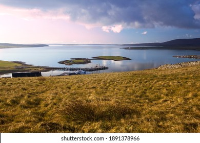 Aerial view from top of hill above Stromness on Orkney islands in Scotland with two small islands in background and golden grass in foreground - Shutterstock ID 1891378966
