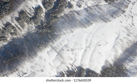 Aerial view or top view of winter forest with snow field, winter background