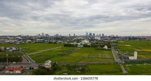Aerial view of town buildings and rice fields in Saitama Prefecture, rural Japan