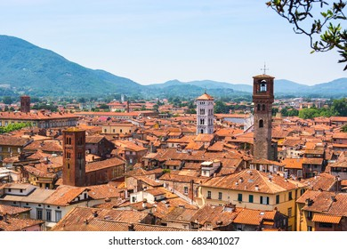Aerial view of town Lucca and typical houses, Tuscany. Italy